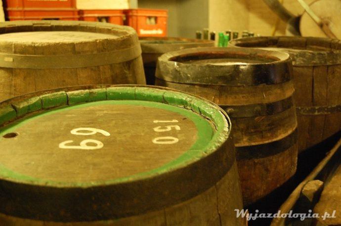beczki na piwo browar w brugii
