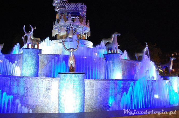 Kutaisi fontanan nocą