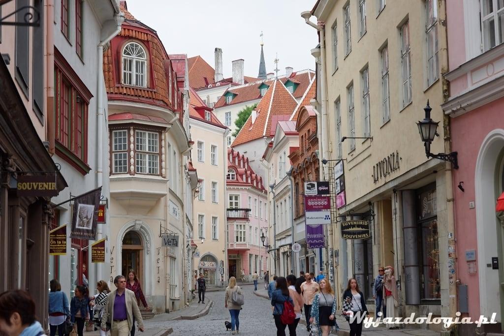 stare miasto w Tallinie