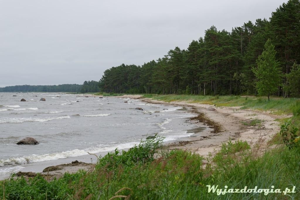 estonia-atrakcje-lahemaa_33