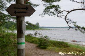 Estonia Samochodem