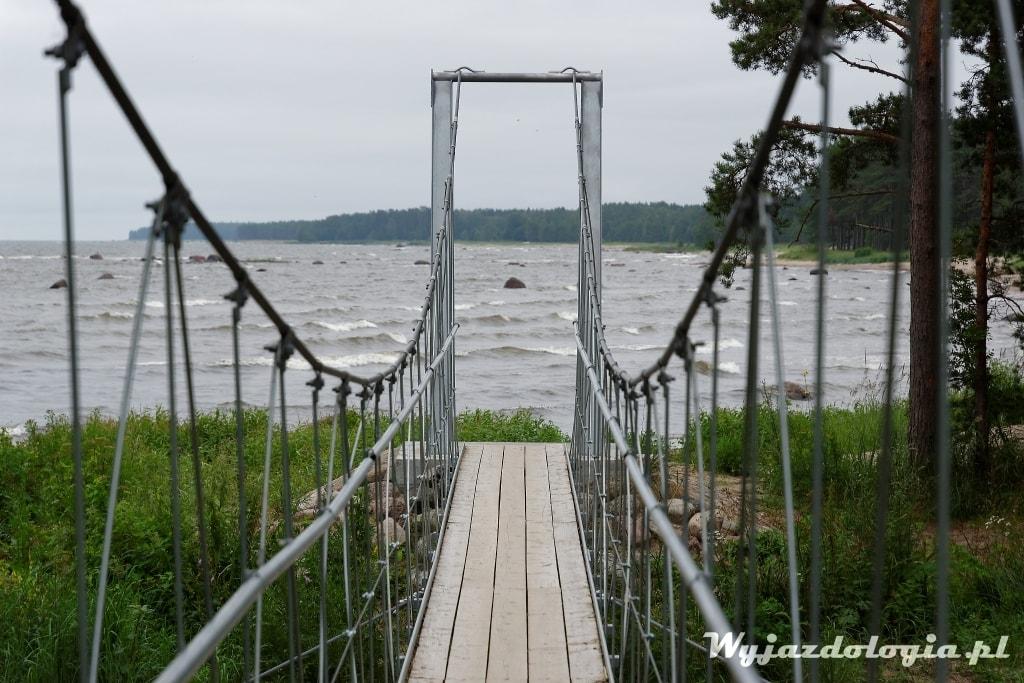 Estonia co warto zwiedzić
