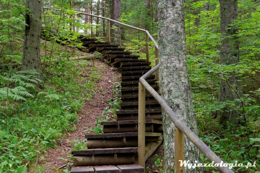 Estonia Atrakcje Lahemaa