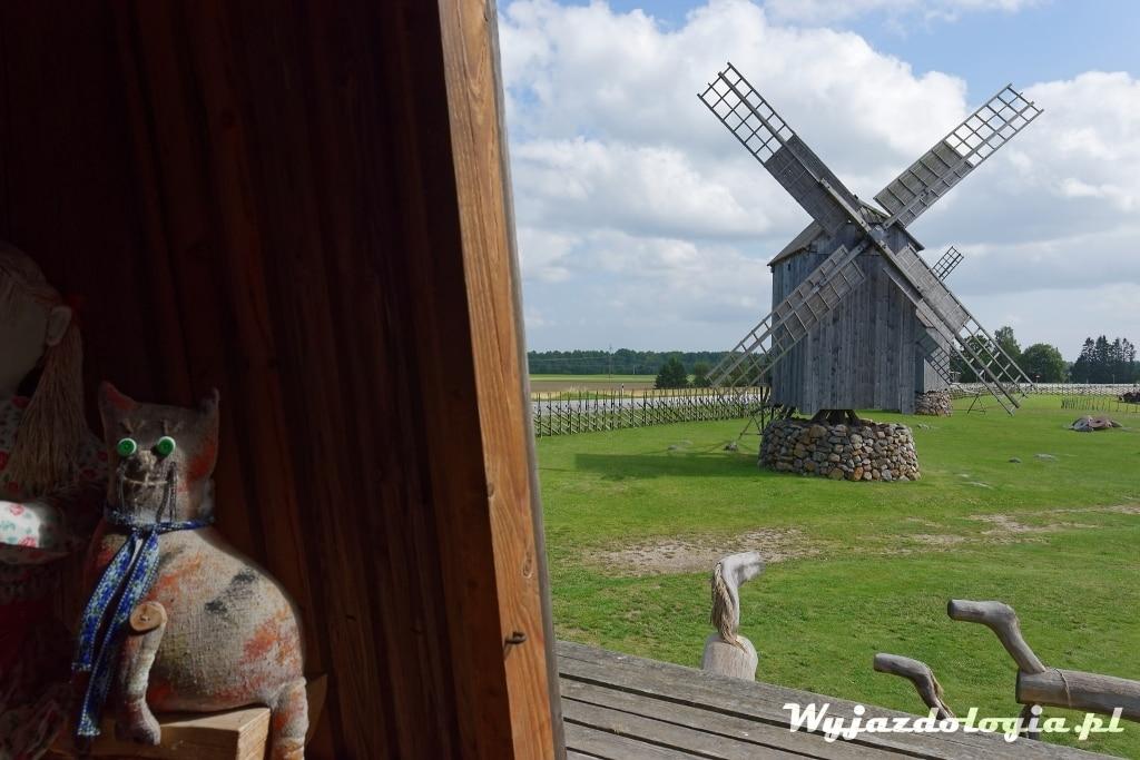 pluszowy kot z krajów bałtyckich