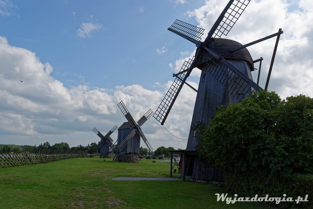 wiatraki w estonii na wyspie sarema