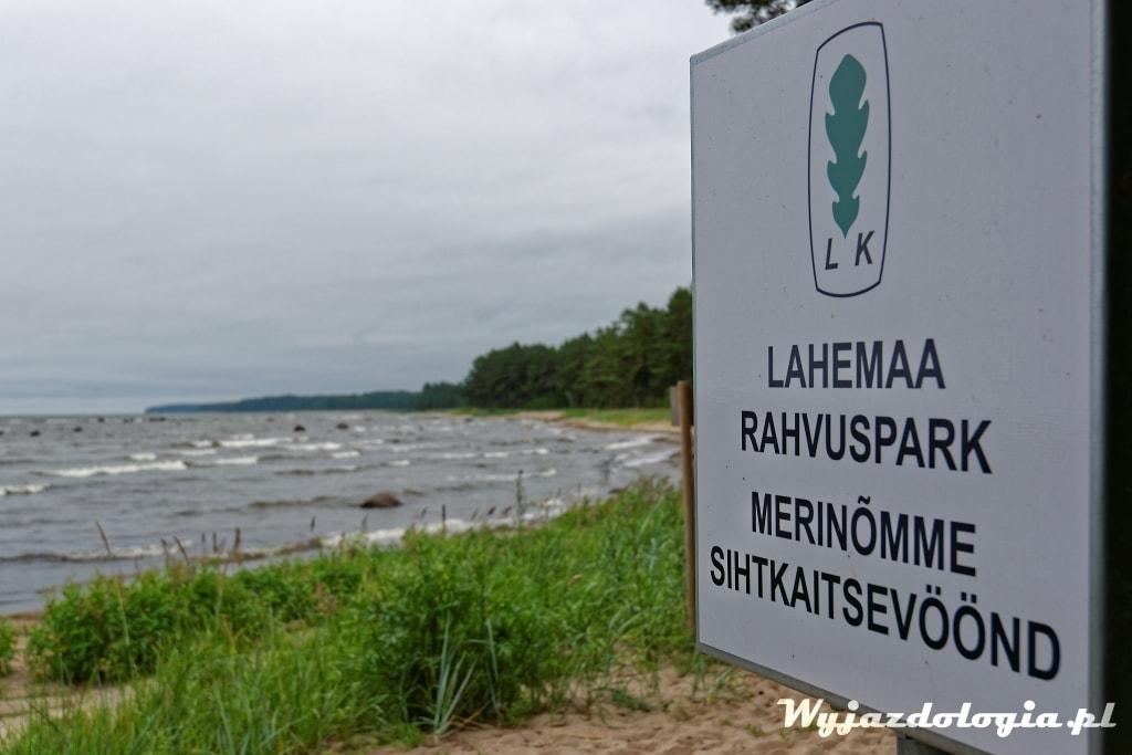 estonia-co-warto-zobaczyc-park-narodowy-lahemaa