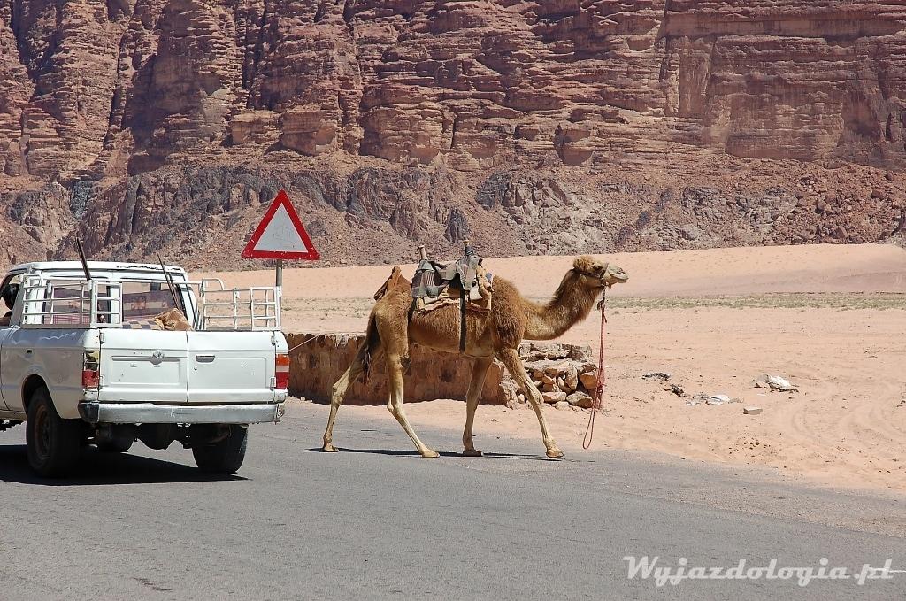 jak się jeździ po Jordanii