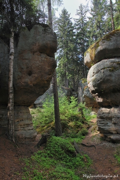 skalne atrakcje Gór Stołowych