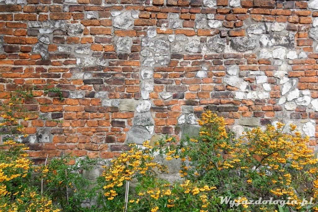 Kraków cegły