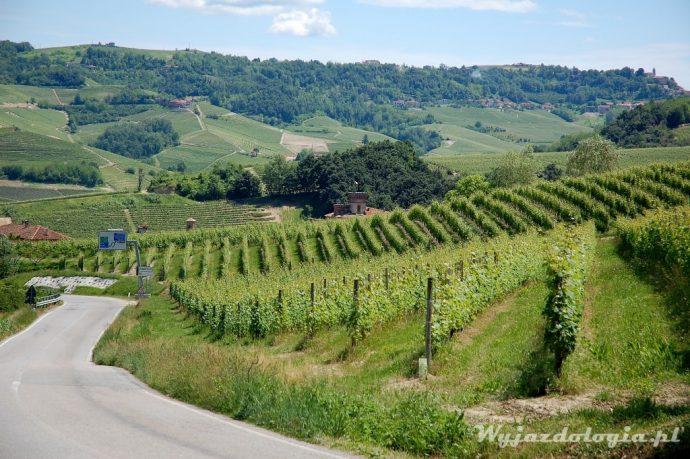 Barolo winnice we Włoszech
