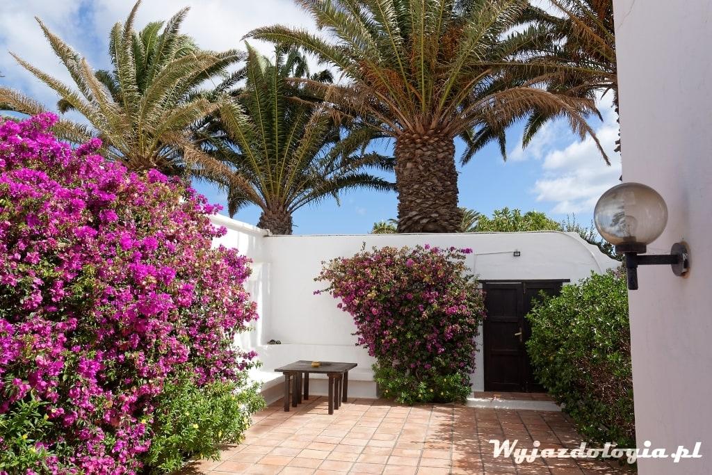 własny dom na Wyspach Kanaryjskich