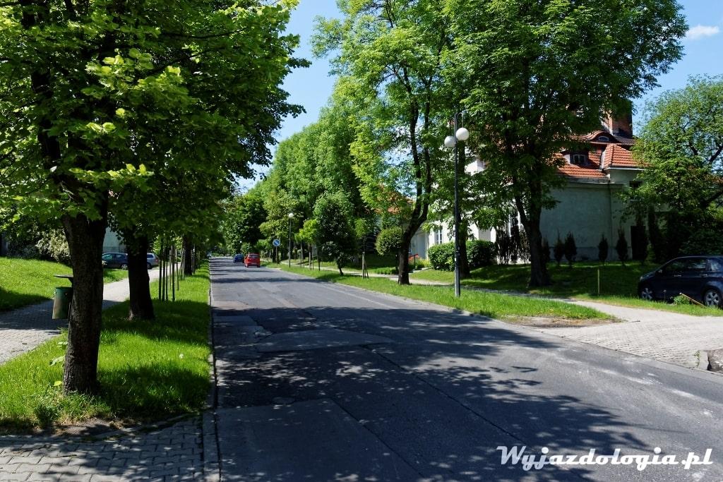 chelm-co-warto-zobaczyc-atrakcje_27