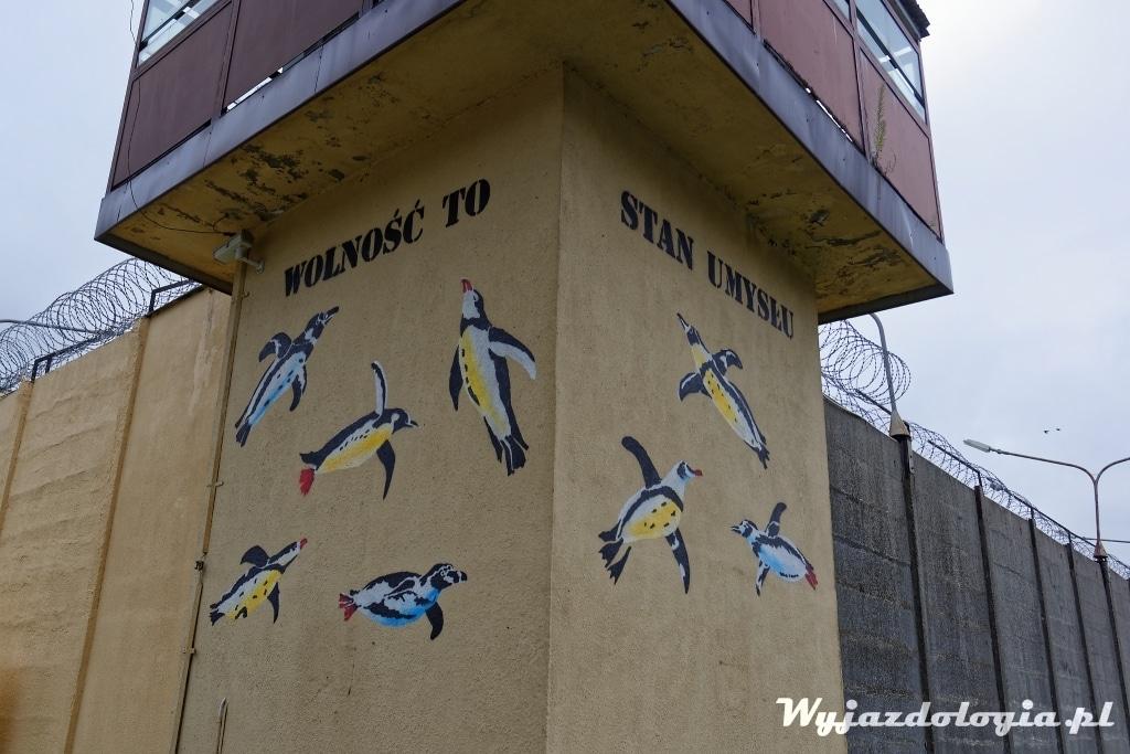 Lublin mural z pingwinami na murze aresztu