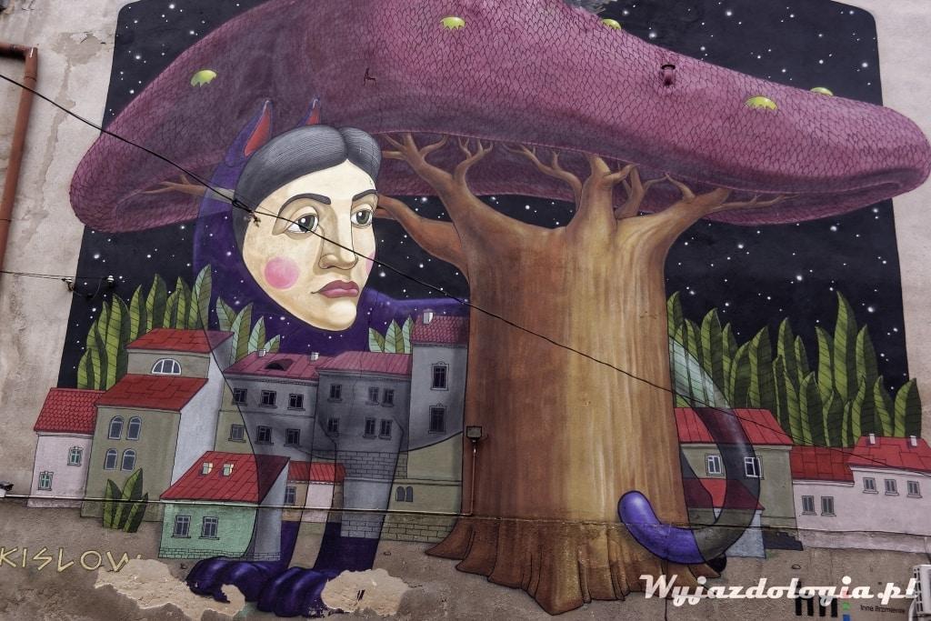 Mural Lubartowska 55 Lublin