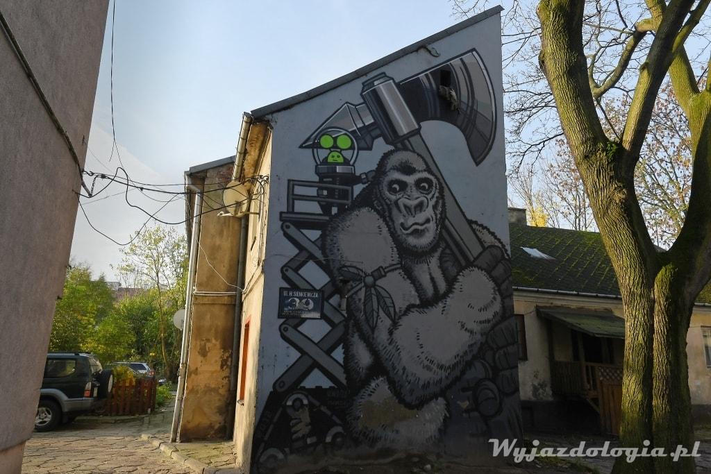 Płocku Mural Goryl Sienkiewicza