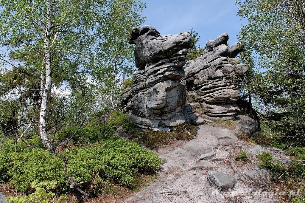 zwiedź Błędne Skały to ciekawa atrakcja Gór Stołowych