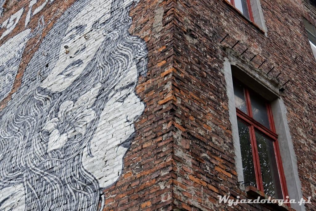 Kraków Plac Bawół Mural