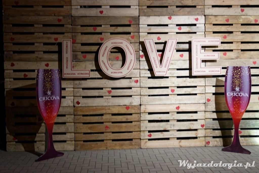love love i wino