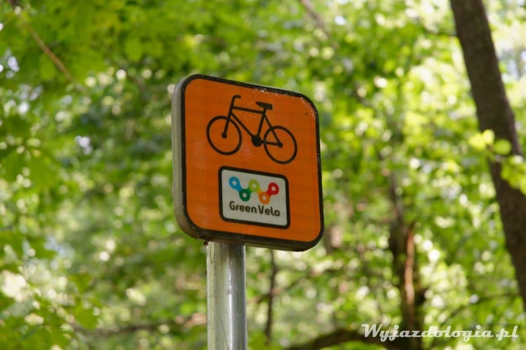 Białowieża wypożyczalnia rowerów