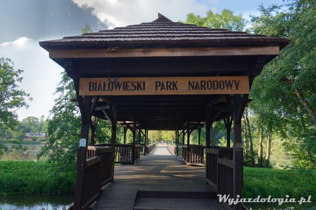 białowieża park pałacowy