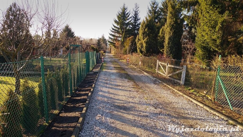 ścieżka ogródki działkowe