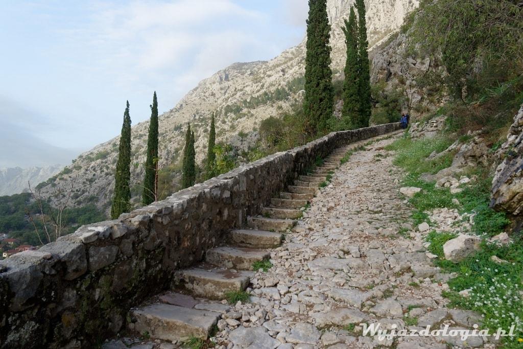 kotor schody na górę