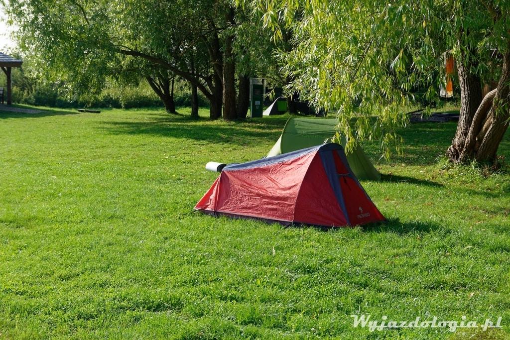 Pole namiotowe w Narwiańskim Parku Narodowym