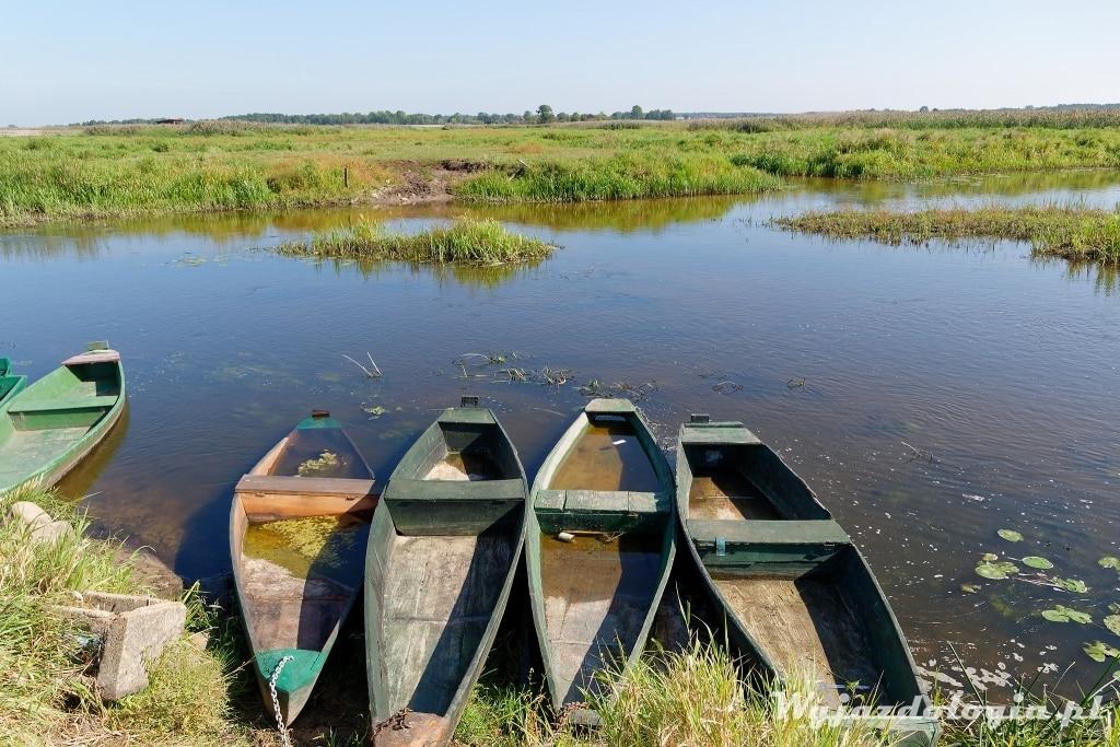 Łódka Pychówka w Narwiańskim Parku Narodowym