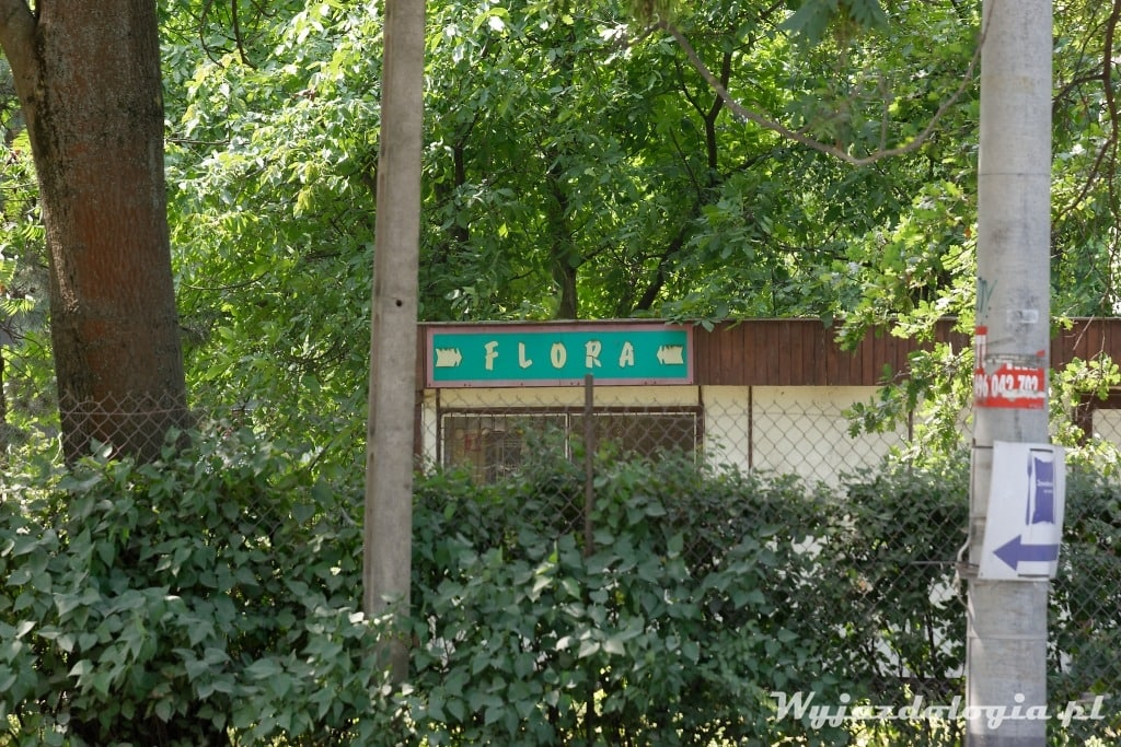 Flora Siekierki