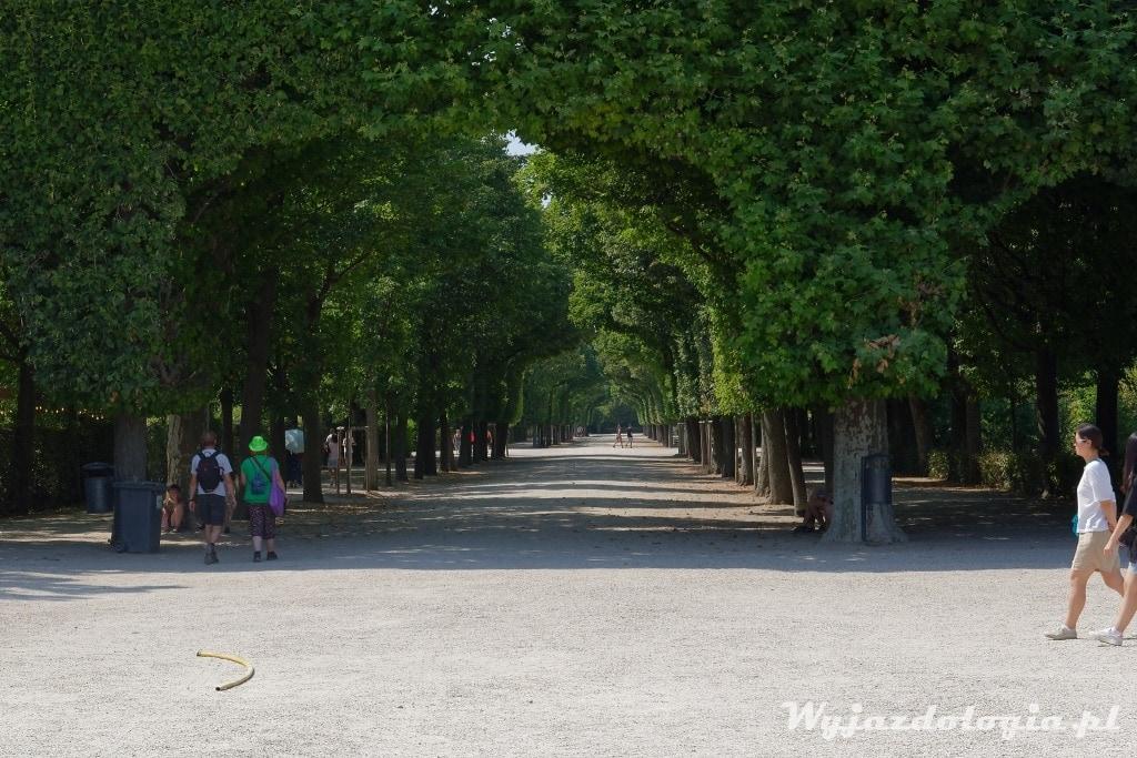 Park Pałacowy Schonbrunn to ciekawa do zwiedzenia trakcja Wiednia