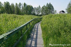 Gdzie na spacer w okolicach Warszawy